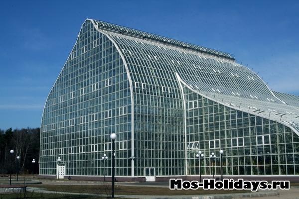 Оранжерея в Главном ботаническом саду Москвы