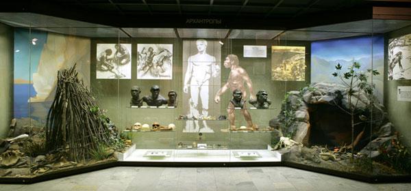 На третьем этаже музея Дарвина