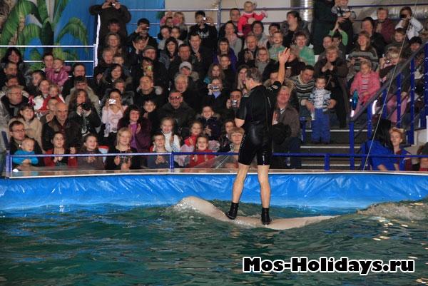 Дельфинарий на ВВЦ