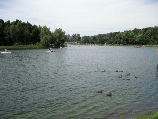 Круглый пруд в Измайловском парке