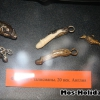 erotic-art-museum33