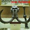 Бивни мамонта в Палеонтологическом музее