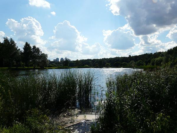 Один из прудов в парке Покровское-Глебово-Стрешнево
