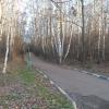 troparevsky-park13