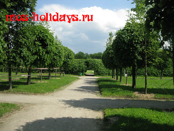 Французский парк в усадьбе Архангельское