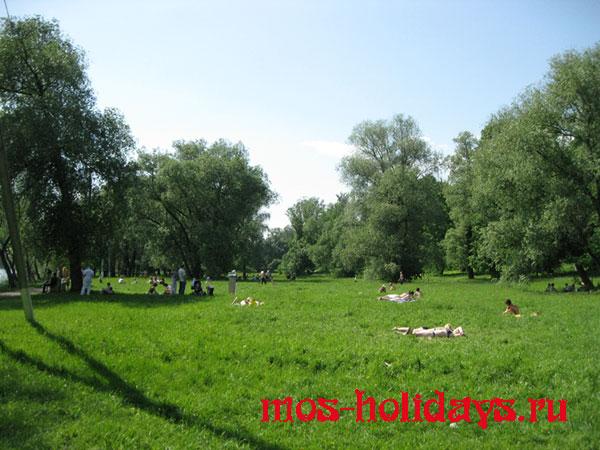 После прогулки по усадьбе Архангельское можно устроить пикник и позагорать на берегу Москва-реки