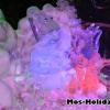 sokolniki-vystavka-ledanyh-skulptur11