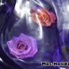sokolniki-vystavka-ledanyh-skulptur16
