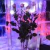 sokolniki-vystavka-ledanyh-skulptur32