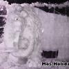 sokolniki-vystavka-ledanyh-skulptur9