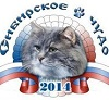 Выставка кошек «Сибирское чудо – 2014»