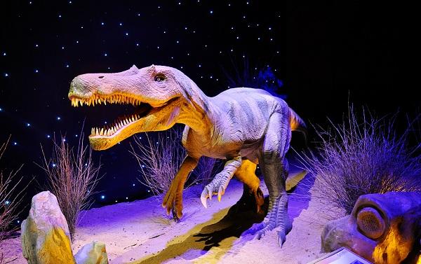 С 22 декабря 2014 г. по 11 марта 2015 г. на ВДНХ в павильоне 57, общей площадью 15 тыс. м², будет действовать масштабный познавательный проект, родом из Аргентины, – выставка «Город динозавров». Экспозиция впервые будет показана в Москве.