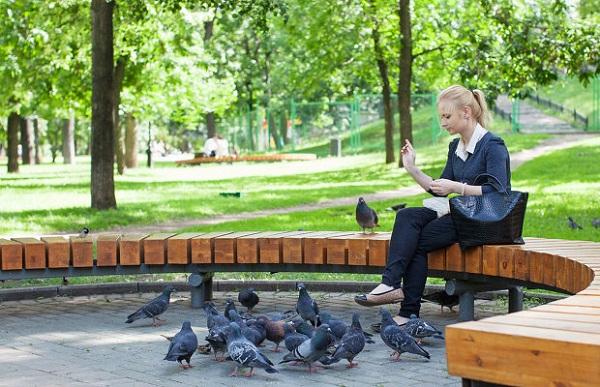 Москворецкий парк находится в западной части Москвы. Он относится к особо оберегаемым природным территориям. Парк состоит из 22 отдельных экологических зон, отделенных друг от друга реками, заливами, каналами и улицами.