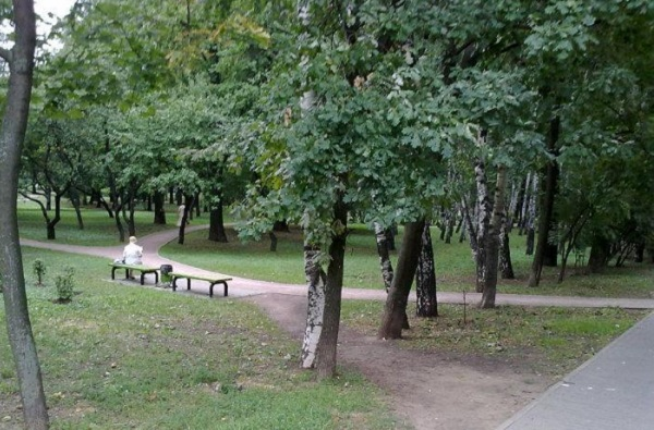 Парк «Северные дубки»