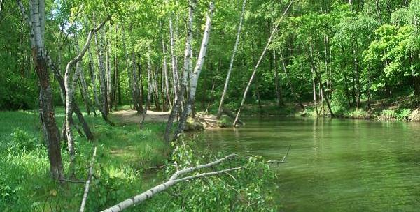 Тропаревский пруд