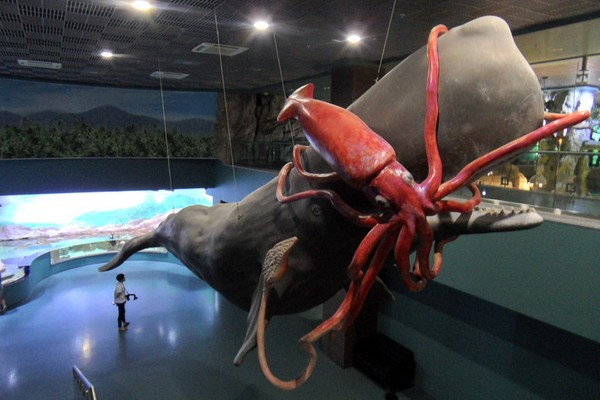 Центр океанографии и морской биологии «Москвариум» на ВДНХ