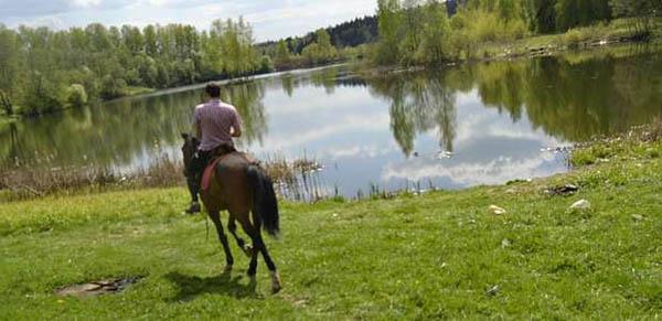 1 или 2 часа конной прогулки для одного или пары от частной конюшни «Космос»