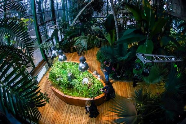 VIII фестиваль орхидей, хищных растений и растений пустынь «Тропическая зима»