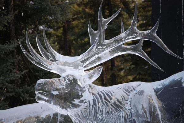 Ледяная мастерская в галерее «Полярная звезда»