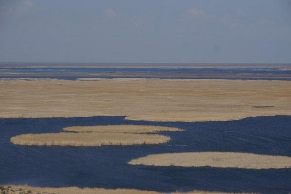 Фотовыставка «Непознанная Земля: Арал и плато Устюрт»