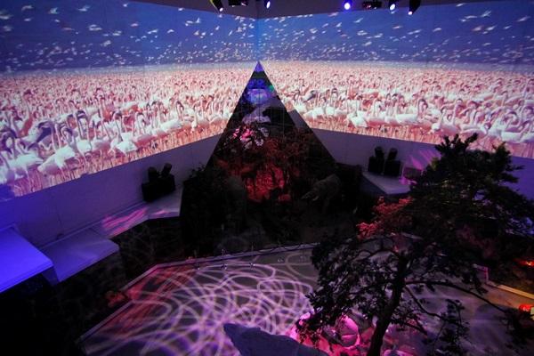 Постоянная свето-видео-музыкальная выставка «Живая планета»