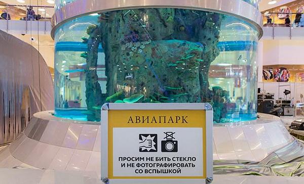 Аквариум в ТЦ Авиапарк занесен в книгу рекордов гиннеса - Москва 7114e3e0581