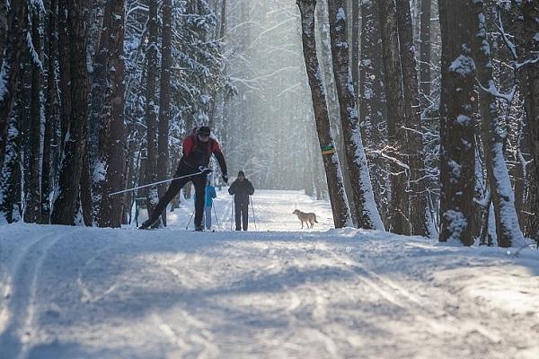 Лыжный интеллектуальный биатлон в Москве