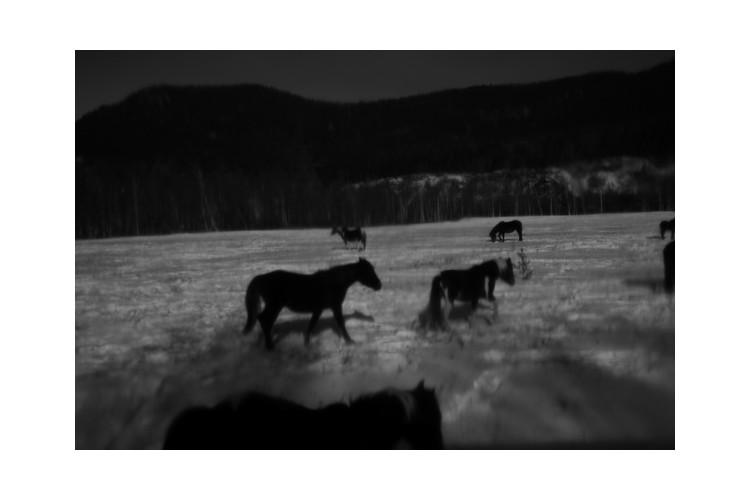Выставка «Ледяной поход» в Галерее Классической Фотографии