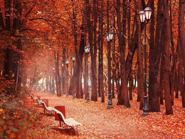 Индивидуальная экскурсия «Оттепель: нескучная прогулка по парку Горького. Погружение в эпоху советских надежд»