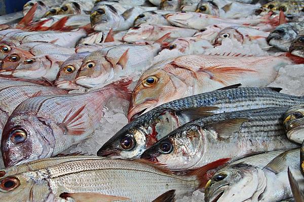 Гастрономический фестиваль «Рыбная неделя – 2018»