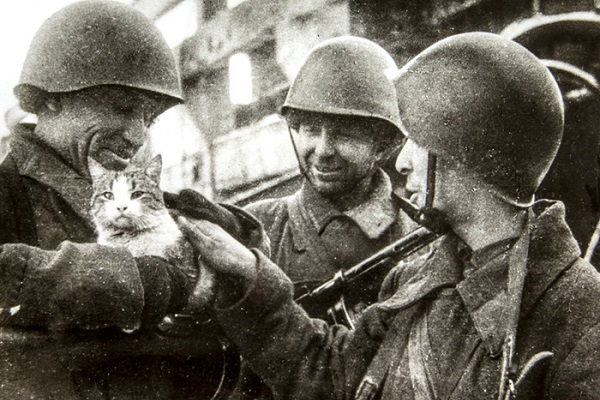 Выставка «Город гнева: Сталинградская битва в литературе»