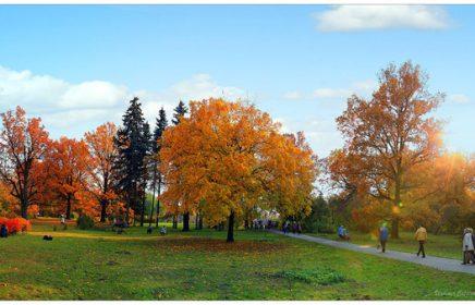 Главный ботанический сад Москвы им. Н.В. Цицина