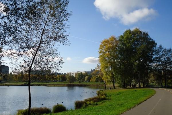 Муринский парк: фото, адрес, где находится и как добраться -  Санкт-Петербург 2021