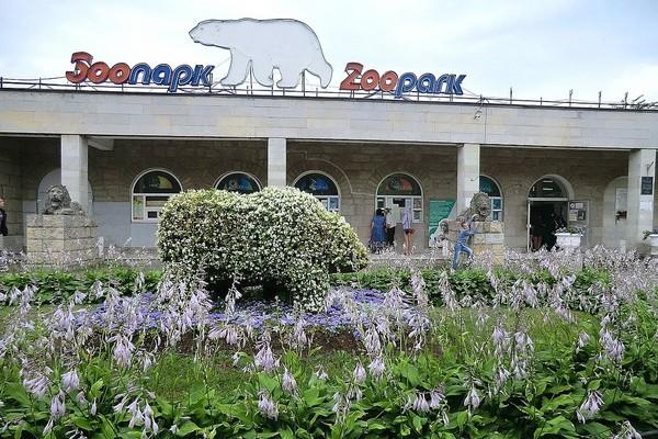 Зоопарк часы работы стоимость ленинградский часы продал песков