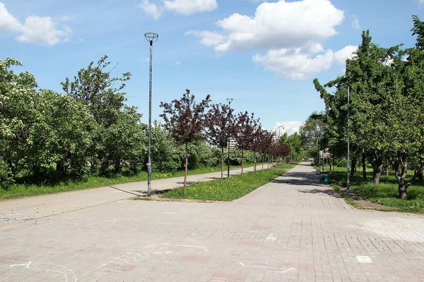 Парк «Яблоневый сад»