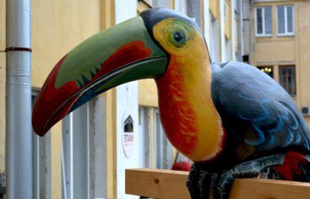 Постоянная выставка «Птицы» в «Этажах»