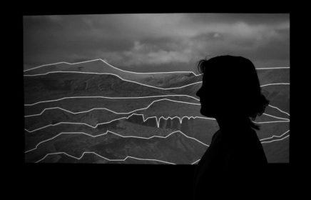 Выставка «Заземление» в рамках фестиваля технологического искусства Ars Electronica