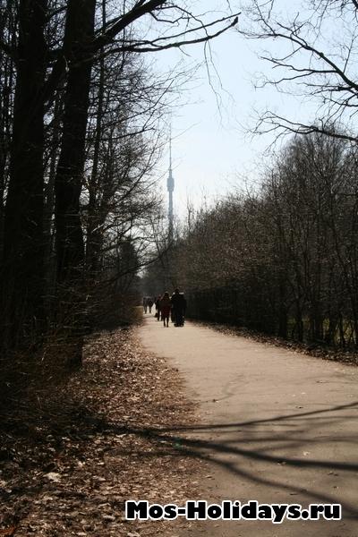 Останкинская телебашня, вид из Главного ботанического сада Москвы