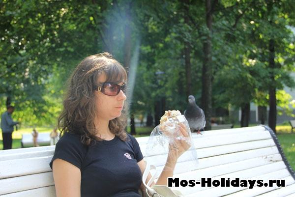 Наглые птицы в Екатерининском парке
