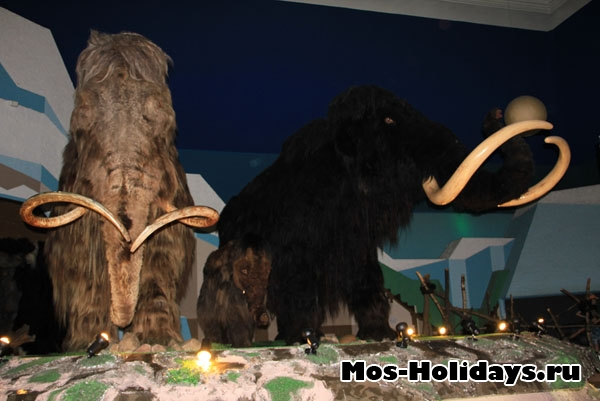 https://mos-holidays.ru/wp-content/gallery/lednikovyj-period/glacial-period25.jpg