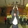 Скелет гигинтского оленя в Палеонтологическом музее