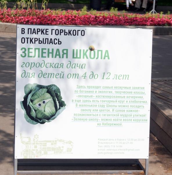 Зеленая школа для детей в Парке Горького