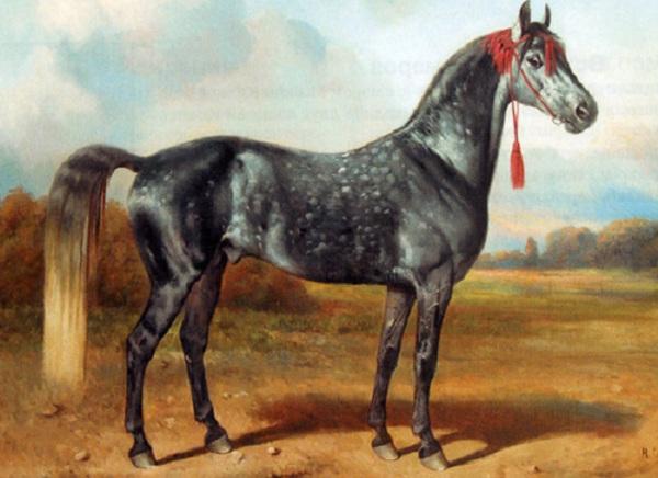 Постоянная экспозиция в Музее коневодства