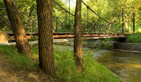 «Долина реки Сетунь» – природный заказник