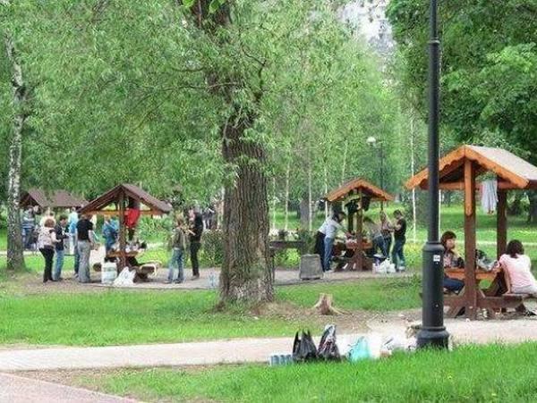 Площадка для жарки шашлыка в Царицыно
