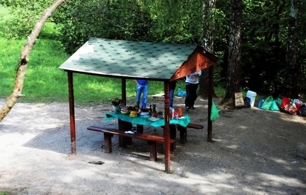 Площадка для жарки шашлыков в Тропаревском парке