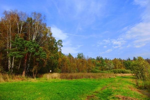 Лосиный остров – национальный парк Подмосковья