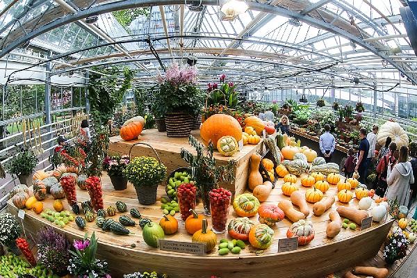 Фестиваль цветов, урожая и искусства «Краски осени – 2018»