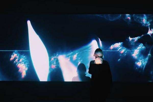 Выставка «ЭХО» в галерее Proun Moscow