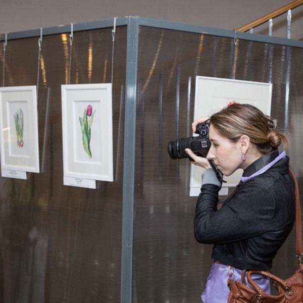 Выставка ботанической живописи «Весна не за горами»